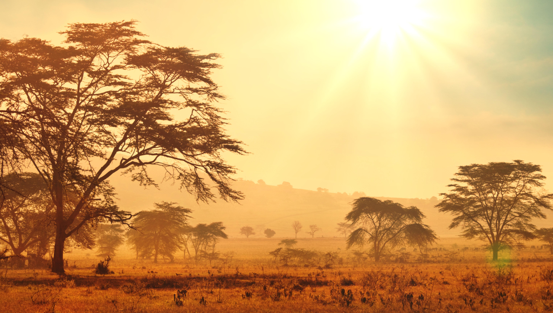 africa-mifi-wifi-rental